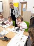 """Warsztaty edukacyjne """"Dinozaury"""""""